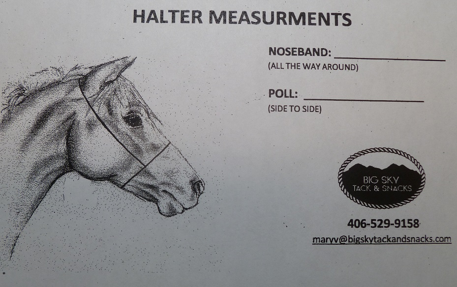 halter-measurements.jpg